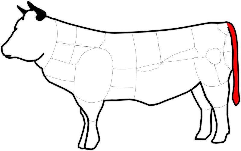 Schema eines Ochsenschwanz