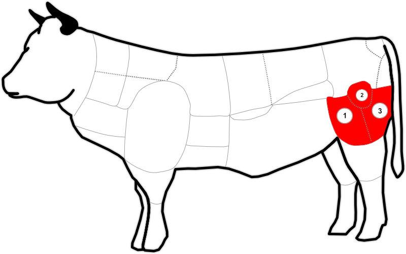 Abbildung des Round beim Rind
