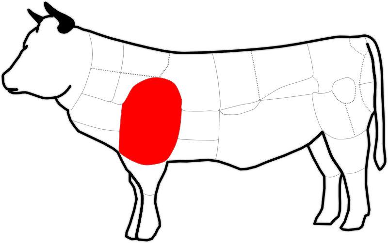 Abbildung einer Schulter oder Bug des Rindes