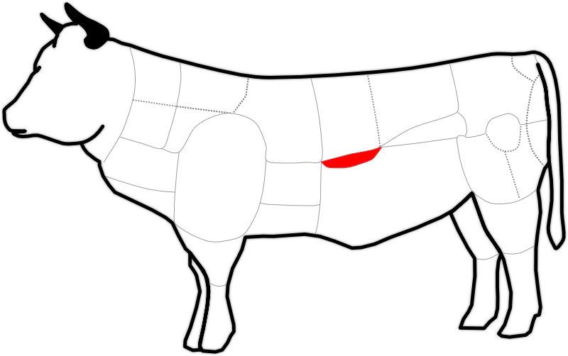 Abbildung der Niere beim Rind