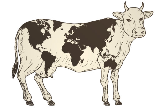 Überall auf der Welt werden Beefcuts & Steakcuts anders behandelt und bezeichnet.